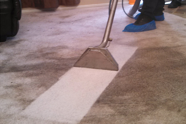 Sweeney Cleaning Carpet Cleaners